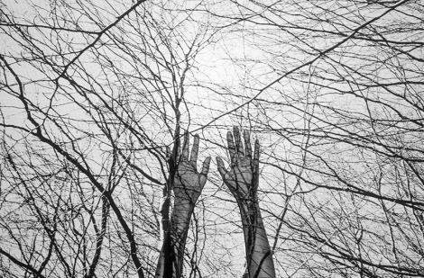Mireia Alises. Autorretrato, 2016